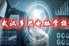 武汉多思电脑学校